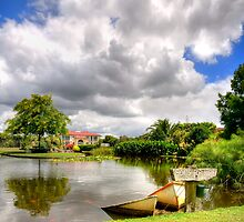 Ngatea Water Garden by Aaron Radford