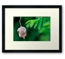 hanging around for too long Framed Print