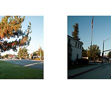 Huntington Drive + San Marino Avenue, san marino (II), Los Angeles, California, USA...narrowed. by David Yoon