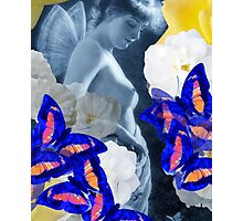 Fairy, Roses, Butterflies – February 16, 2010   Photographic Print
