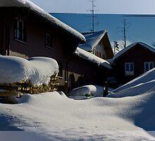 Hulftegg Switzerland by Dania Reichmuth
