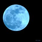 Blue Moon by Mary Campbell