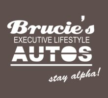 Brucie's Executive Lifestyle Autos by mr-tee