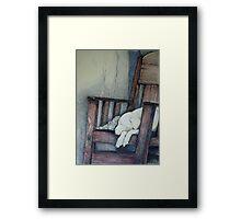 Sleeping Dog in Panama Framed Print