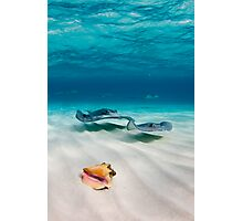 Two stingrays & a shell went into a sandbar... Photographic Print