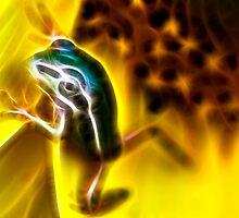 FrogArt by Aaron Radford