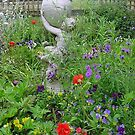 annuals colour around lovely urn by BronReid