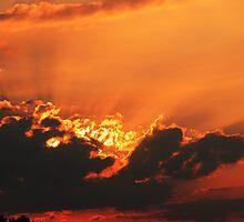 Red - Golden Dreams by newfan