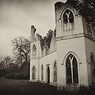 Abbey Ruin by Lisa Williams