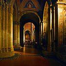 San Michele, Pavia , Italy by Erwin G. Kotzab