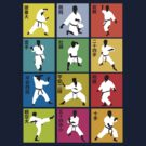 Shotokan Kata by Steve Harvey