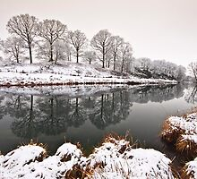 Elterwater inlet by Shaun Whiteman