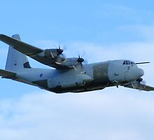 Lockheed Hercules C3 by Yvonne Falk Ponsford