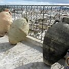 Pottery Jugs on a Tunis Roof  by Lucinda Walter