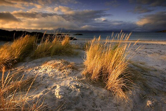 Scotland : Ben&#x27;s Beach by Angie Latham