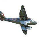 de Havilland Dragon Rapide by Yvonne Falk Ponsford