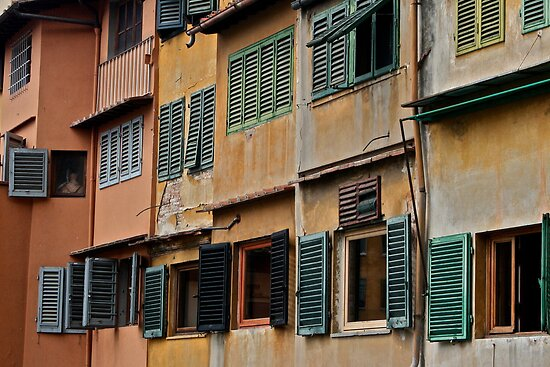 Florence Windows by emerson