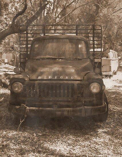 Bedford Truck by Julie  Sutherland