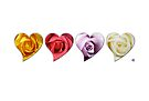 Heart roses by Jacqueline Eden