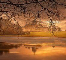 Foggy morning by Gouzelka