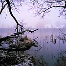 """Wintery Morning at Loughrigg Tarn"" by Bradley Shawn  Rabon"