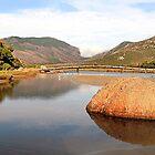 Tidal River by Stephen Ruane