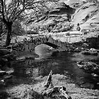 The Great British Lake District by Rhubarbonline