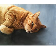 Mr. Snuggles Photographic Print