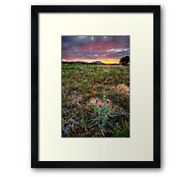 Bloom to Mountain Framed Print