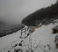 This Mornings Walk - Entwistle Reservoir  by eddiej