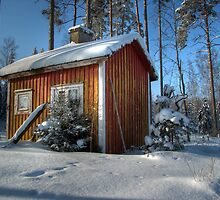 18.2.2010: Sauna & Winter by Petri Volanen