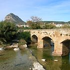 View to Javea from the 17th Century bridge by Fay  Hughes