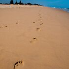 Follow in my Footsteps by SusanAdey