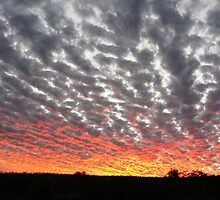 Sunset colours reflect onto the clouds by Tim Coleman