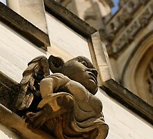 Gargoyle, Magdalen college, Oxford by buttonpresser