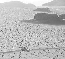 Solitary Roadtrip by dimpdhab