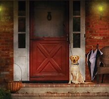 Animal - Dog - Waiting for my Master by Mike  Savad
