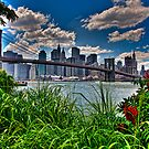 Spring In Brooklyn Bridge Park, NY, USA by Chris Lord
