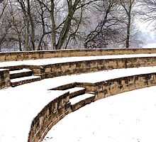 Snowy Steps at Phillips Park by Brian Gaynor