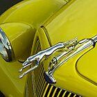 Yellow Greyhound by Richard Lawry
