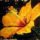 Yellow Flower by jomillwood