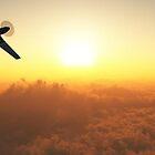 P51 Flyby by krazyredboy