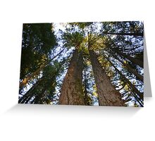 Giants Reaching for the Sky Greeting Card