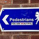 Beautiful Pedestrians by Simon Gentleman