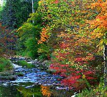 Scenic Autumn landscape by snehit