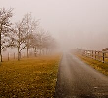 Another foggy day by carlosramos
