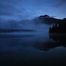 Twilight by Claire Armistead