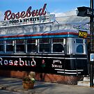 Old Vintage Rosebud Diner by Paul Marotta