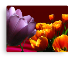 Tulips on Red Canvas Print