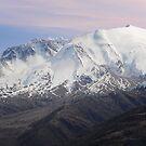 Mt. St. Helens, Washington  by Bob Hortman